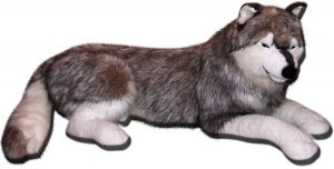 Истински Сибирски вълк 040230